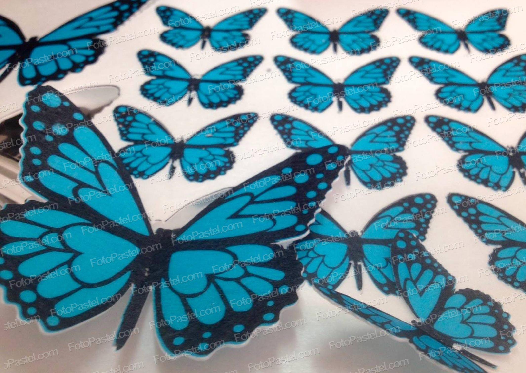 Mariposas en papel de arroz precortado fpdpm11a - Mariposas para decorar ...